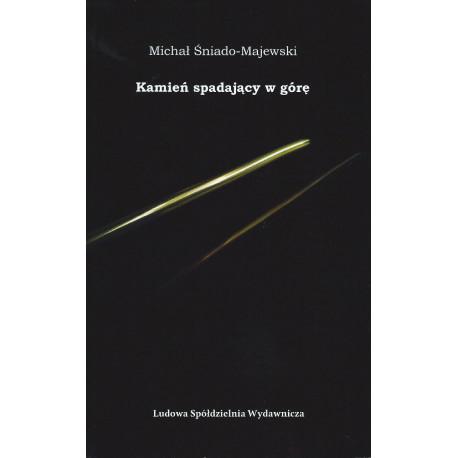 Kamień spadający w górę - Michał Śniado-Majewski